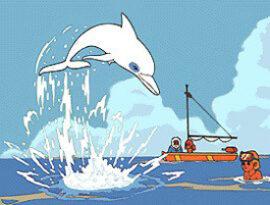 Zum_il_delfino_bianco-cover