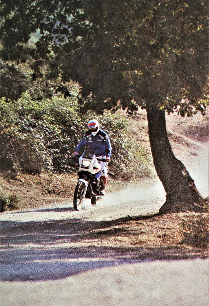 Moto Guzzi NTX