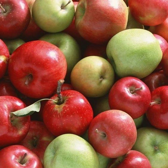 Frutta e verdura vintage..