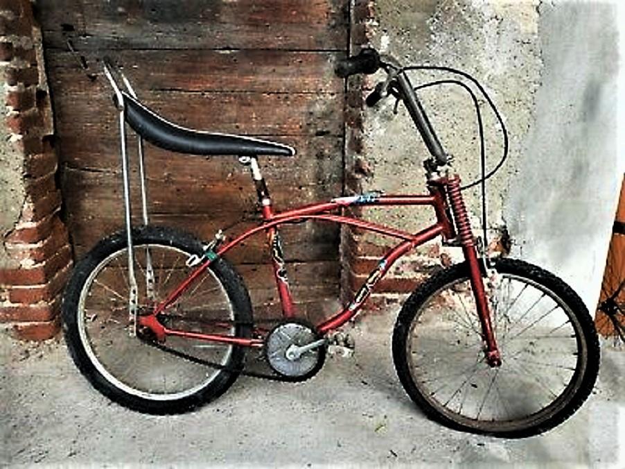 Le biciclette della mia gioventù, Manuel te la ricordi ????