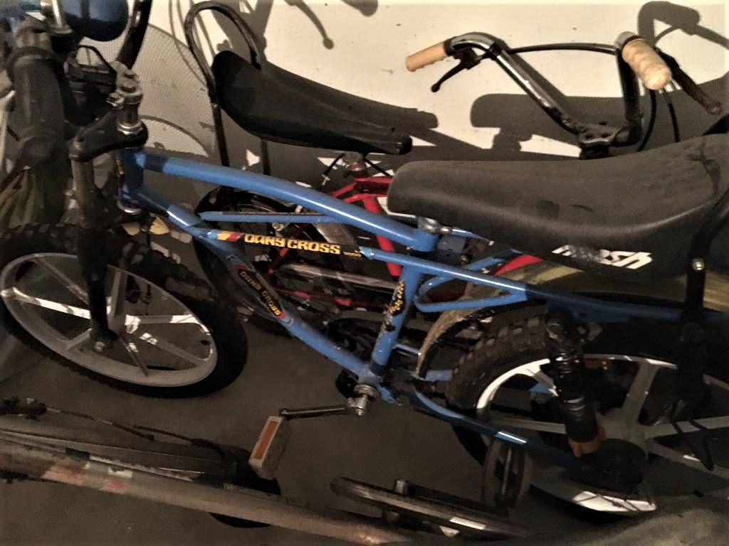 Le biciclette della mia gioventù, Quella presa un paio di anni fa in un mercatino.
