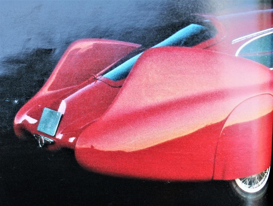 Cisitalia Aerodinamica Savonuzzi, Le pinne nel dettaglio.