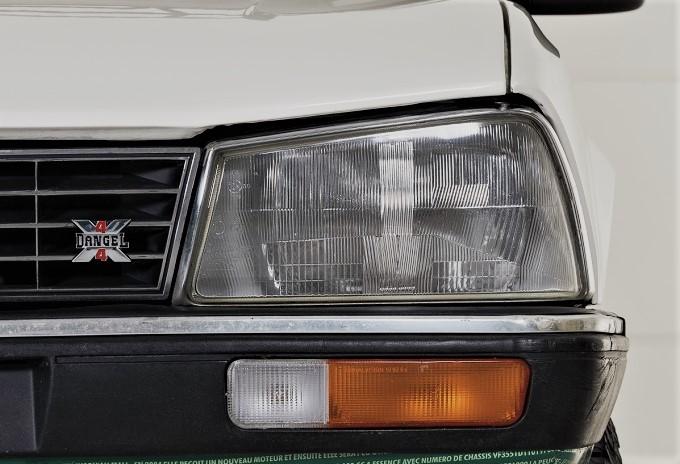 Dangel e Peugeot Il logo è presente in vari punti dell'auto.